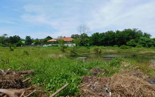Ethus Real Estate Land Naiharn For Sale (5)