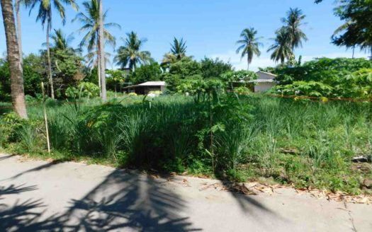 Et Hus Real Estate NaiHarn Beach Land For Sale (5)